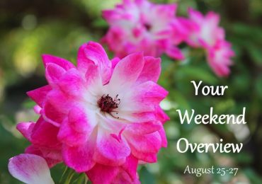 Weekend Overview August 25-27